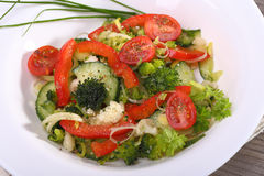 Vegetable salad in a plate Stock Image