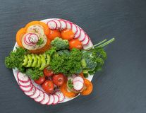 Vegetable salad on a plate on a gray background royalty free stock images