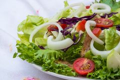 Vegetable salad on plate Royalty Free Stock Photo