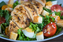 Vegetable salad with roasted chicken meat Royalty Free Stock Image