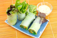 Vegetable Salad Roll on plate Royalty Free Stock Photography