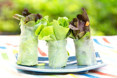 Vegetable Salad Roll Royalty Free Stock Photography
