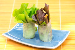 Vegetable Salad Roll Royalty Free Stock Image