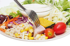 Vegetable salad with salad cream Stock Photography