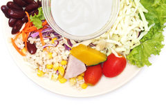 Vegetable salad with salad cream on plate Royalty Free Stock Photography