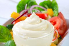 Vegetable salad with salad dressing Stock Images