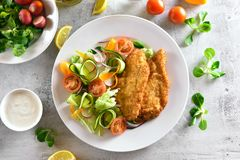 Vegetable salad and schnitzel. Salad from radish, zucchini, tomato, greens and schnitzel on stone background. Top view, flat lay Stock Photos