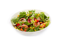 Vegetable salad with shrimp Royalty Free Stock Images