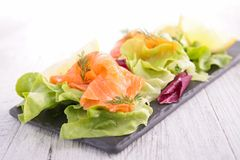 Vegetable salad with smoked salmon Stock Images