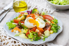 Vegetable salad with soft-boiled egg Stock Photography