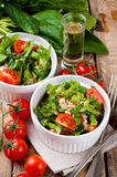 Vegetable salad with spinach Royalty Free Stock Images