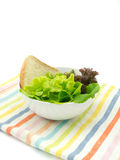 Vegetable salad on stripe cloth in white background Stock Photos