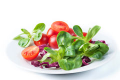 Vegetable salad isolated Royalty Free Stock Images