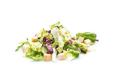 Vegetable salad with tomatoes and lettuce on white Royalty Free Stock Photography