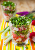Vegetable salad in transparent glass, radishes and onions. Food Royalty Free Stock Photo