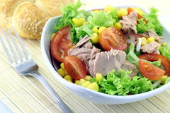 Vegetable salad with tuna. In a bowl Stock Image