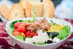 Vegetable salad with tuna and bread Stock Image
