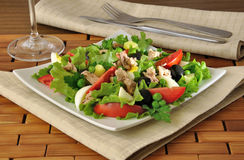 Vegetable salad with tuna and egg Royalty Free Stock Photos
