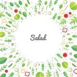 Vegetable salad. Vector illustration of healthy vegetable salad on white background Royalty Free Stock Image