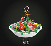 Vegetable salad vector illustration Royalty Free Stock Photo