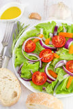 Vegetable salad on the white plate Royalty Free Stock Photo