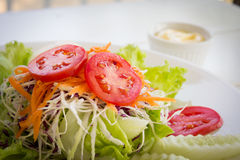 Vegetable salad on white plate. Royalty Free Stock Photos