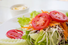 Vegetable salad on white plate. Stock Photography