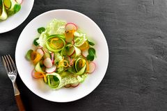 Vegetable salad from zucchini, radish, greens. Low calories healthy organic food. Vegetable salad from zucchini, radish, greens on black stone background with Stock Photography