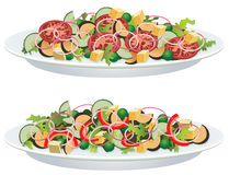 Vegetable salads. Vector vegetable salads on a plate Stock Photo