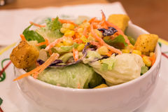 Vegetable salat Royalty Free Stock Images