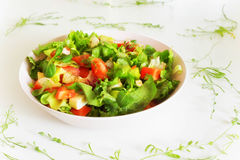 Vegetable salat with toppings such as mozzarella cheese, tomato, Stock Images