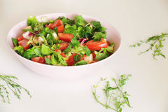 Vegetable salat with toppings such as mozzarella cheese, tomato, Royalty Free Stock Photo