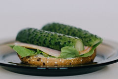 Vegetable Sandwich Royalty Free Stock Photography