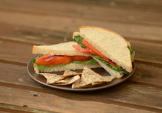 Vegetable sandwich and tortilla chips Royalty Free Stock Images