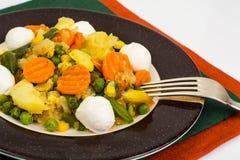 Vegetable saute with mozzarella Stock Photo