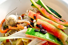 Vegetable scraps in a white plastic bowl Royalty Free Stock Photos