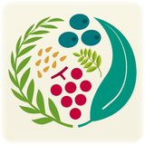 Vegetable seal (vector). Illustration of vegetable seal (different types of vegetable icons) (vector Royalty Free Stock Photo