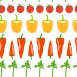 Vegetable seamless pattern Stock Photos