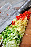 Vegetable and seasoning particle. Particle of vegetable and seasoning preparing for cooking, with cook chopper, shown as raw and fresh food, or local flavor and Royalty Free Stock Images