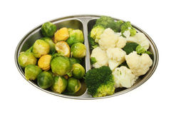 Vegetable selection Stock Photography