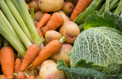 Vegetable Selection Royalty Free Stock Image