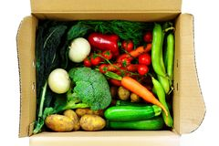 Vegetable selection in box. Selection of freshly picked summer vegetables in cardboard box stock photos