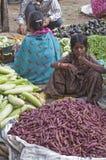 Vegetable Seller Royalty Free Stock Photo