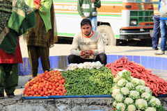 Vegetable seller. Stock Images