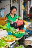 Vegetable seller, Vietnam Royalty Free Stock Photos