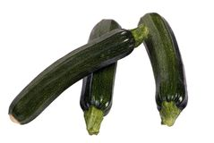 Vegetable Series (zucchini) Royalty Free Stock Photo