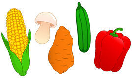 Free Vegetable Set 3 Stock Image - 24930591