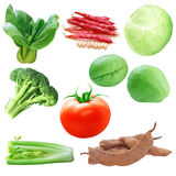 Vegetable Set Stock Image