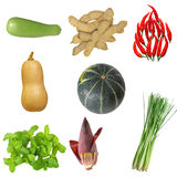 Vegetable Set Stock Photography