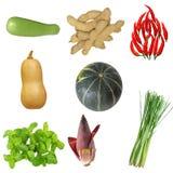 Vegetable Set Stock Photography